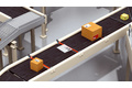 Protrusion detection at the conveyor