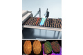 Color and 3D vision system for quality checking of food