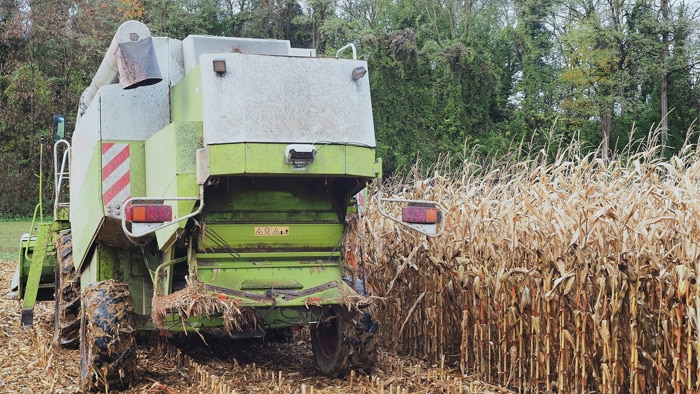 Level monitoring on transfer vehicles is one of the many mobile agricultural machine and harvesting robot applications that can be reliably solved using Visionary snapshot cameras for 3D environmental monitoring by SICK.