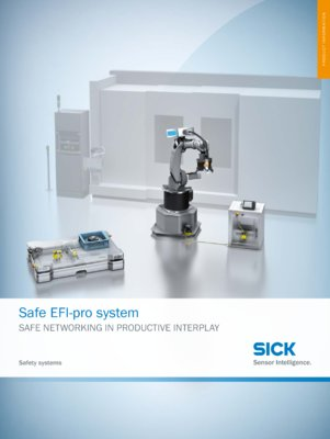 Safe EFI-pro System